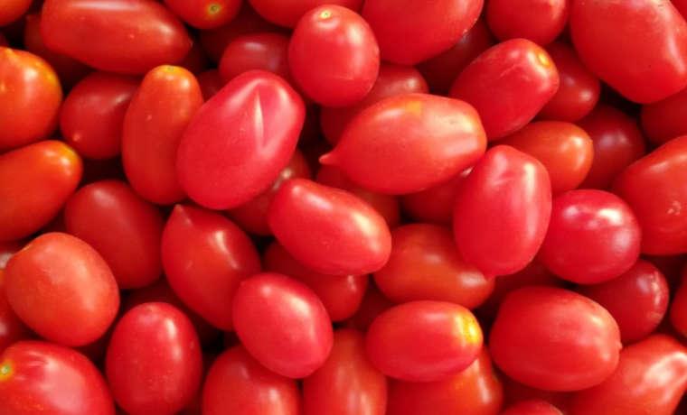 Pelati e salsa di pomodoro, come riempire la dispensa per l'inverno